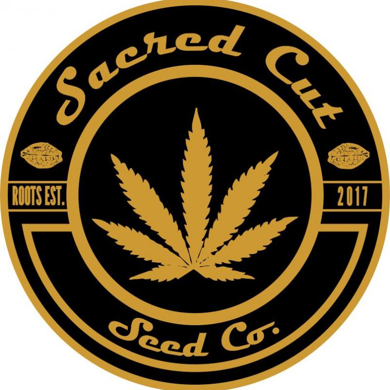 Sacred Cut Seed Co Acai Gelato x (Purple Punch x Animal Cookies)
